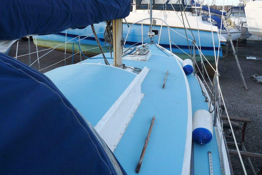 Atlanta Viking 8.5 Yacht - coachroof