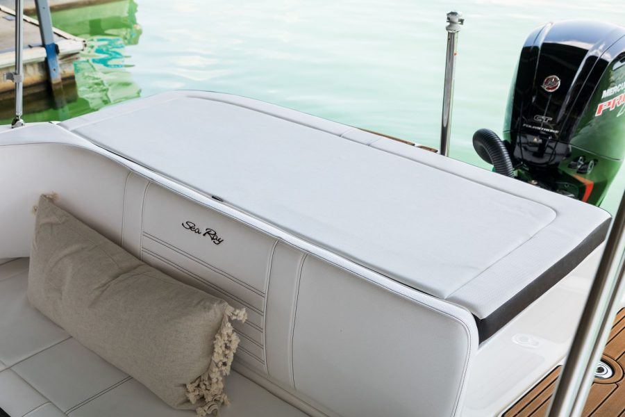 Sea Ray SPX 190 OB - sunpad