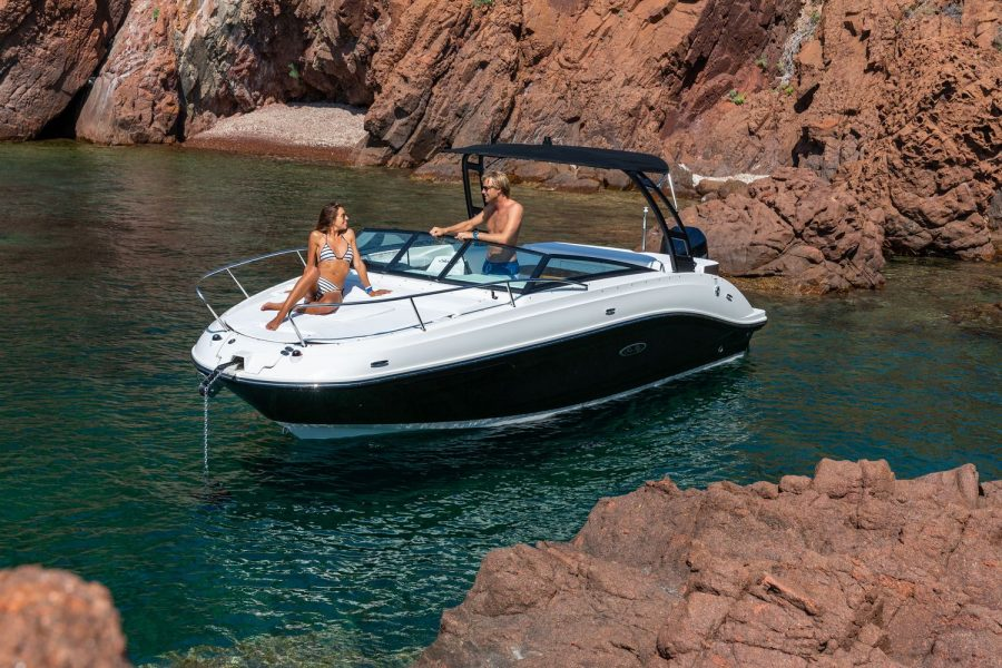 Sea Ray Sun Sport 230 - bow cushions
