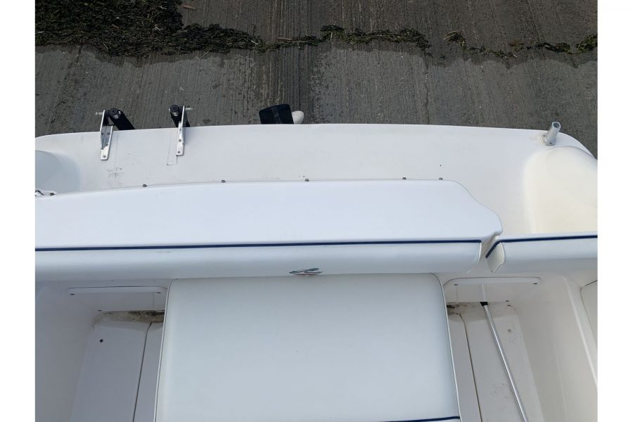 Sea Ray 215 - Ixus - aft platform