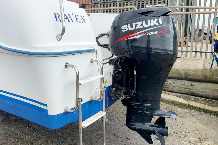 Quicksilver 620 - transom and boarding ladder