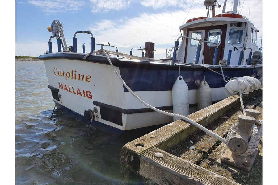 Starfish 8m fishing boat - transom