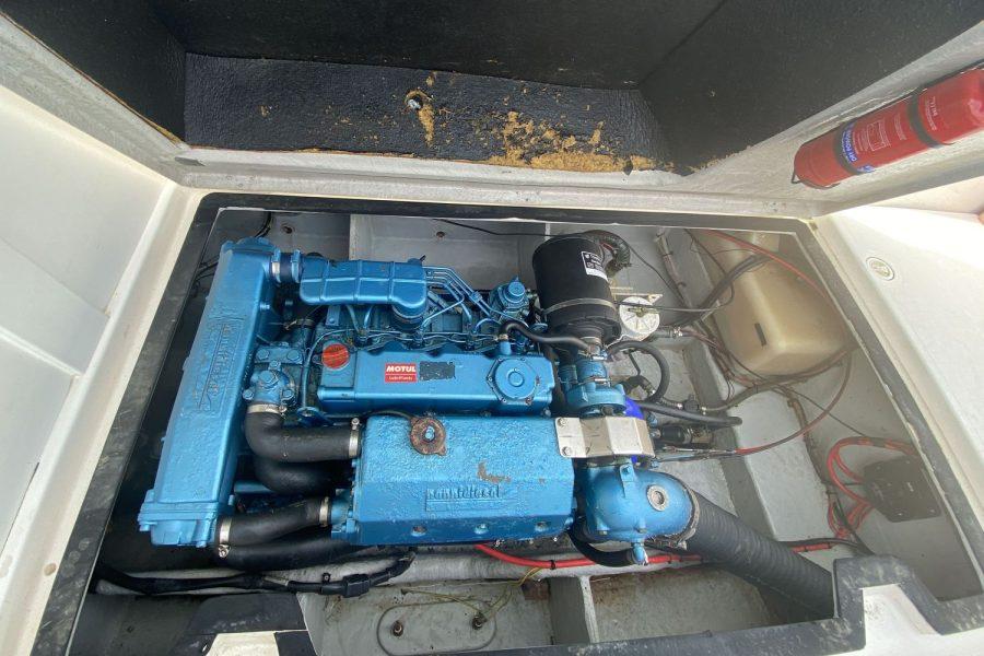 Predator -engine
